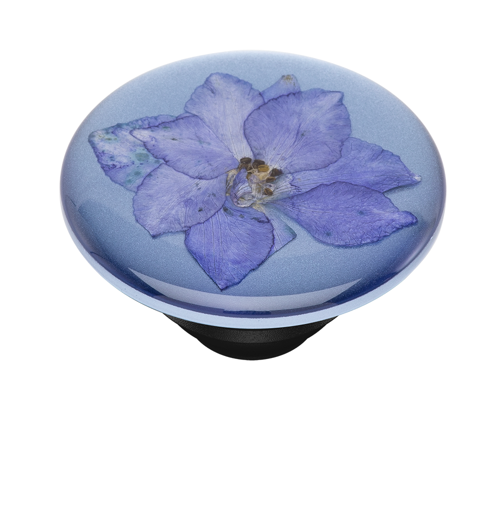 Pressed Flower Larkspur Purple