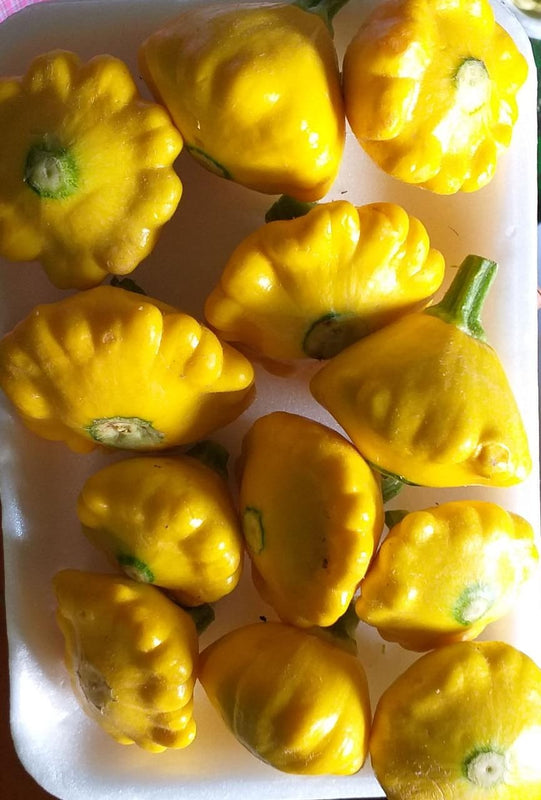 Calabaza Patty - Pan amarilla