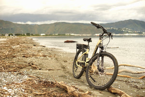 Smartmotion X-City Electric Bike