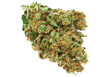 Load image into Gallery viewer, Red Skunk - CBD 12%