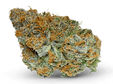Load image into Gallery viewer, Amnesia Haze - 22% CBD