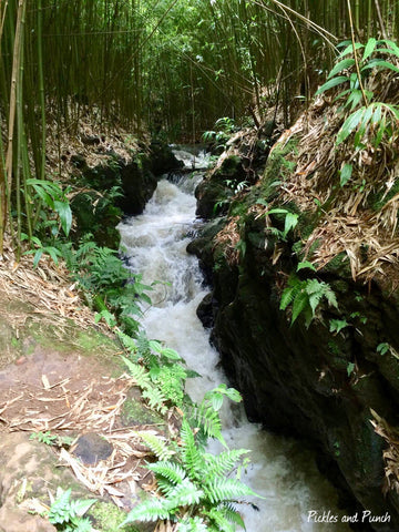 Watermarked2(2019-02-28-2204)-2 hidden hawaii maui adventure waterfall free tourist attraction gem excursion secret family fun rushing water waterfall