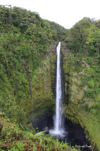 akaka falls waterfall hidden Hawaii adventure