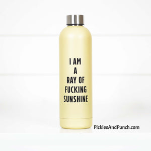 I am a ray of fucking sunshine stainless steel water bottle