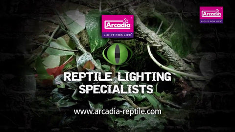Arcadia Reptile reptile lighting specialists