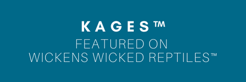 Kages on Wickens Wicked Reptiles