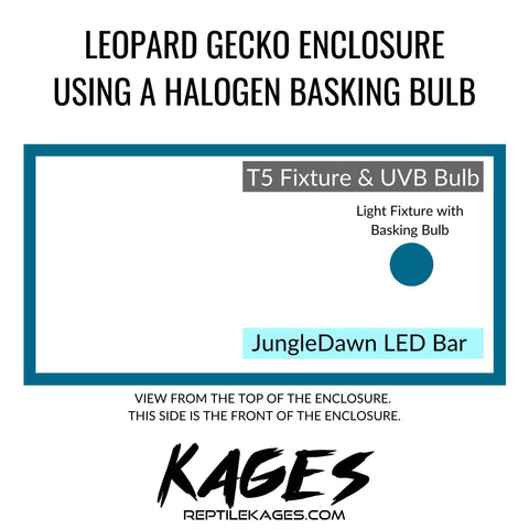 Leopard Gecko Enclosure Guide with Basking Bulb | Kages