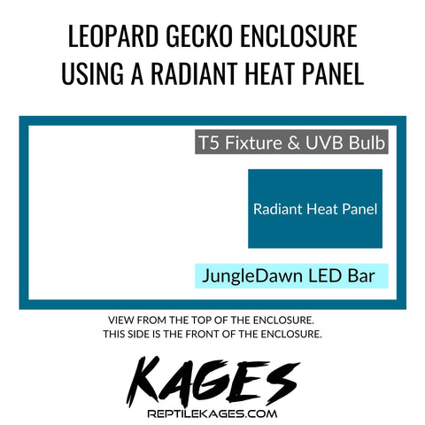 Leopard Gecko Enclosure Guide with Radiant Heat Panel | Kages