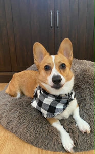 Doggy Bandana by Victoria (3 Patterns to choose from)