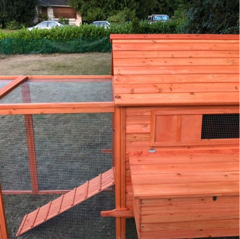 Image of Chicken Coop with Chicken Run back side view