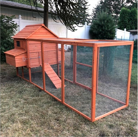 Image of Chicken Coop with Chicken Run