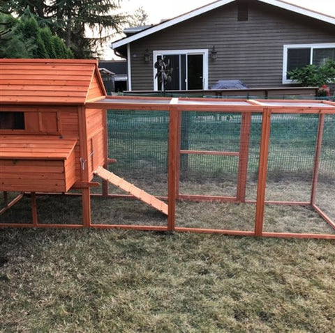 Image of Side View Chicken Coop with Chicken Run