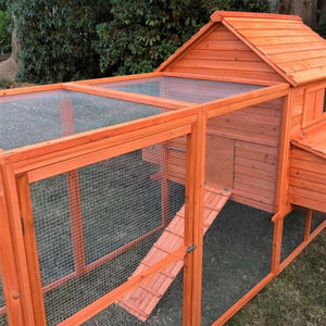 Chicken Coop with Chicken Run Side angle view