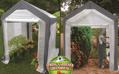 Image of Spring Gardener 8' x 10' Gable Greenhouse