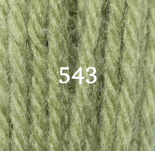 Appletons Tapestry Wool - 543 - The Village Haberdashery