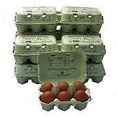 Rookery Farm Organic Eggs, 6 pieces per tray
