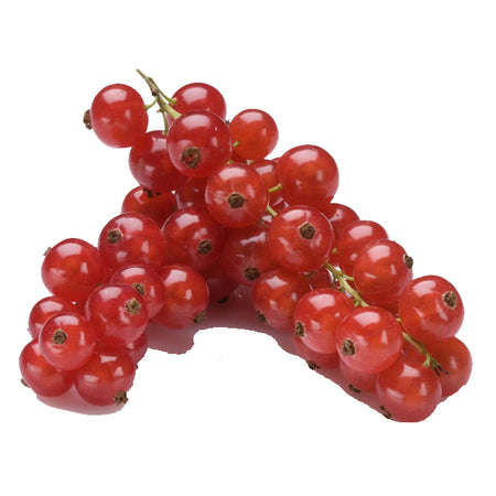 Organic Red Currant Berries 125g