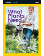 Panorama: Science K.2 What Plants Need