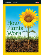 Panorama: Science K.2 How Plants Work