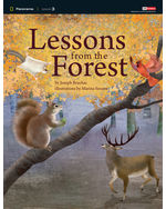 Panorama: Science 3.2 Lessons from the Forest
