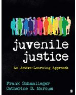 Juvenile Justice: An Active-Learning Approach