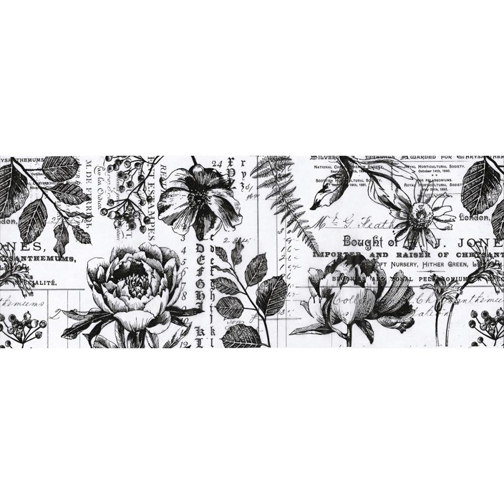 TIM HOLTZ IDEA-OLOGY COLLAGE PAPER BOTANICAL (HAS TO BE ORDERED)