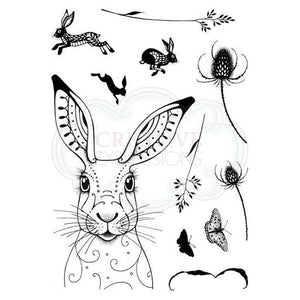 CREATIVE EXPRESSIONS CLEAR STAMPS A5 PINK INK DESIGNS HARE (HAS TO BE ORDERED)