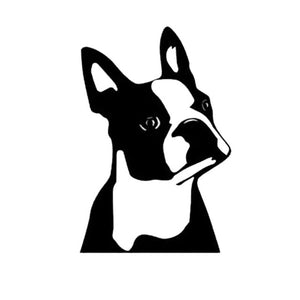 Regal American Gentleman Boston Terrier Vinyl Car Window Sticker