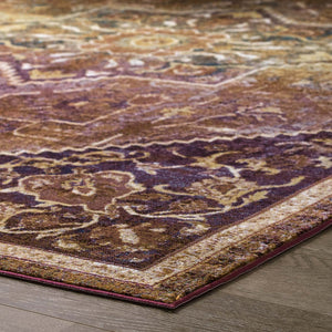 Success Kaede Transitional Distressed Vintage Floral Persian Medallion 5x8 Area Rug