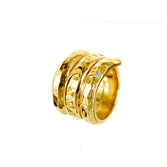 Silver Ring Spiral CARPE DIEM Facetted Gold