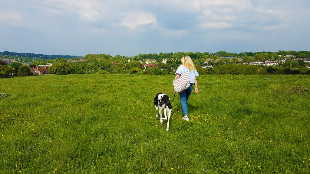 Hannah Lewis and Leo the greyhound - A Dog Walk With Zabby Allen