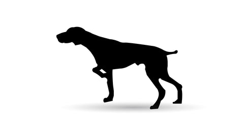 German Shorthaired Pointer Metal Sign