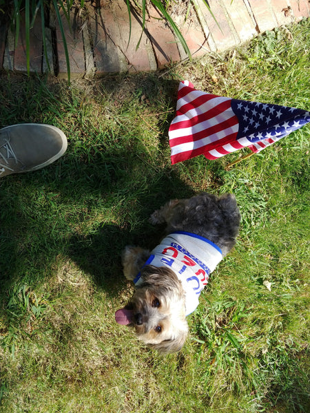 Vote 2020 Doggy Shirt