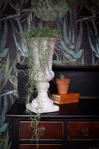 Faux Spanish Moss plant in pot