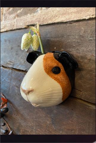 Guinea Pig Wall Vase