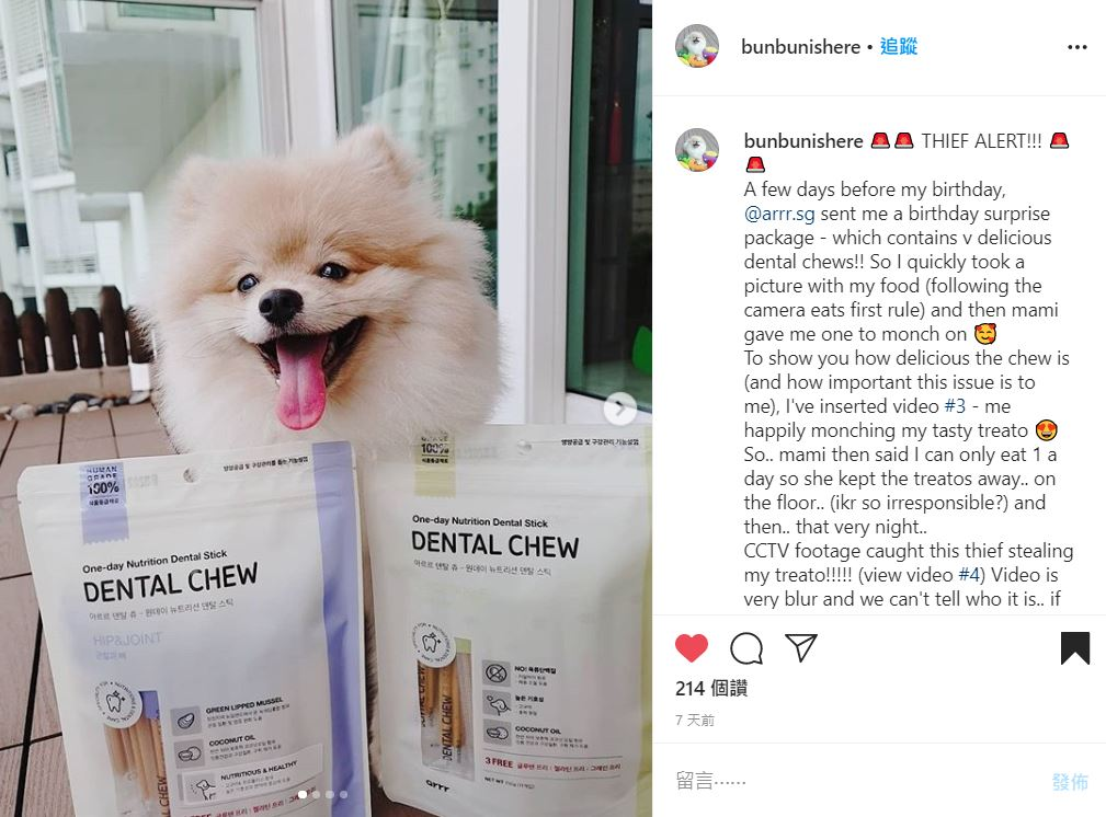 Furkids who hate vegetables? No problem! | arrr Dental Chew Review by bunbunishere