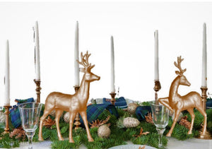 Cozy Evergreen Tablescape Set series 2020