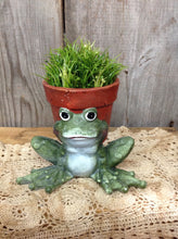 Load image into Gallery viewer, Frog Planter