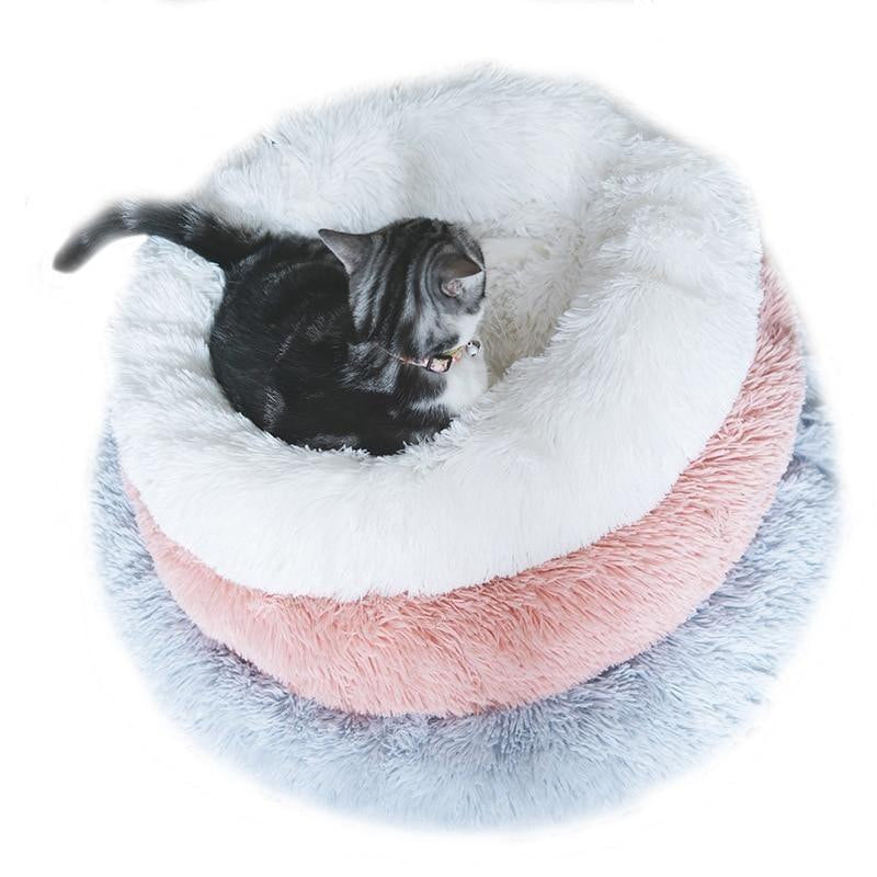 Pop™ Pet Bed For Cats And Dogs