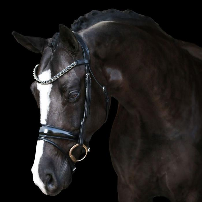 Audrey Italian Leather Bridle (Hanoverian)