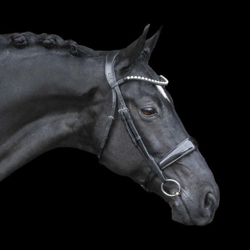 Alison Italian Leather Bridle (Cavesson)