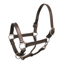 "Load image into Gallery viewer, Premium 1"" Leather Show Halter"