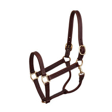 Load image into Gallery viewer, Professional Leather Show Halter
