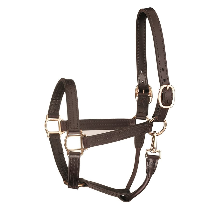 Premium Leather Track Style w/snap Show Halter