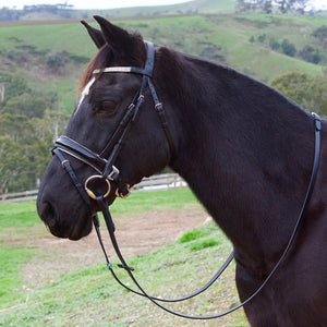 Premium Patent Leather Ultra-Bling Hanoverian Bridle-Tacklet-Tacklet