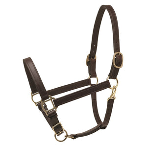Deluxe Havana Leather Turnout Halter