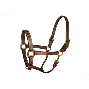 "1"" Havana Leather Stable Halter"