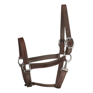 Track Style Leather Turnout Halter w/snap