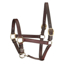 Load image into Gallery viewer, Track Style Leather Turnout Halter w/ adjustable chin