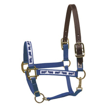 Load image into Gallery viewer, Ribbon Safety Halter